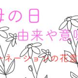 母の日の由来や意味、カーネーションの花言葉について