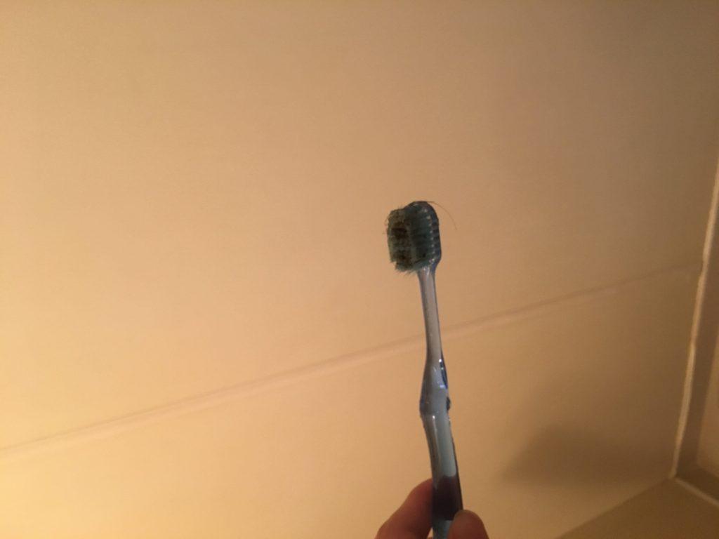 排水溝掃除で歯ブラシが真っ黒になった