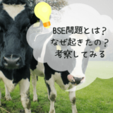 BSE問題
