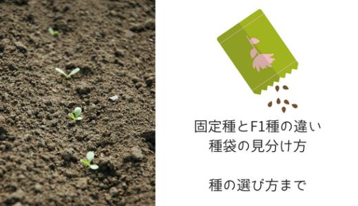 固定種、F1種の違いとメリット、袋の見分け方!種子を選ぶ基準について